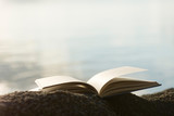 Close up of an open book on a rock at the beach with defocused sea in background. Escapism, reading, imagination and dreamlike concepts. - 163256005