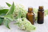 huiles essentielles ,flacons et bouquet floral,plante - 163280455