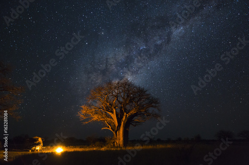 Foto op Plexiglas Baobab Camping under baobab's and milkyway