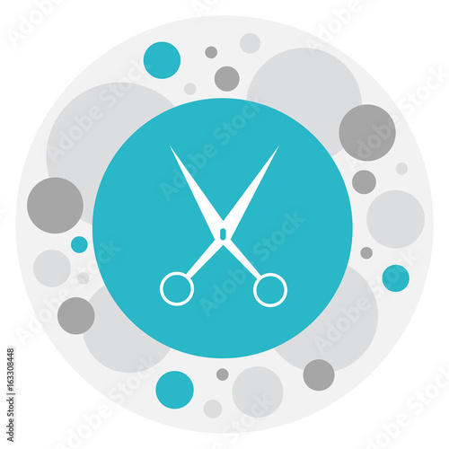 Vector Illustration Of Hairstylist Symbol On Shear Icon. Premium Quality Isolated Clippers Element In Trendy Flat Style.