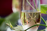 Glass of white wine - 163334865