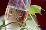 Glass of white wine - 163335089