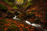 Beautiful falls in autumn forest
