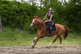 Young pretty girl riding a horse with backlit leaves behind in spring time - 163343673