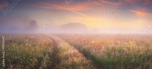 Foto op Plexiglas Zalm Bright sunrise on autumn meadow