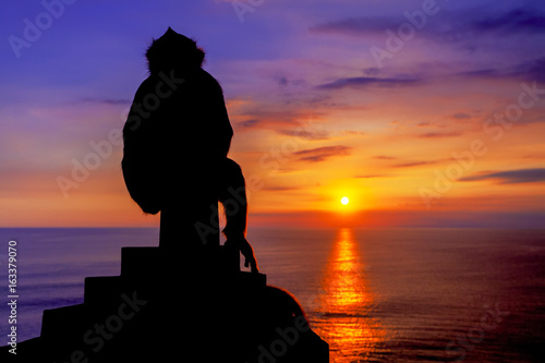 View of Silhouette monkeys at Sunset at Uluwatu cliff in Bali, Indonesia