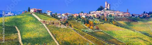 Serralunga d'alba village in Piemonte with vast vineyards. North of Italy