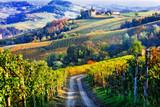 Winnice i zamki w Piemontu jesienne kolory. Na północ od Włoch