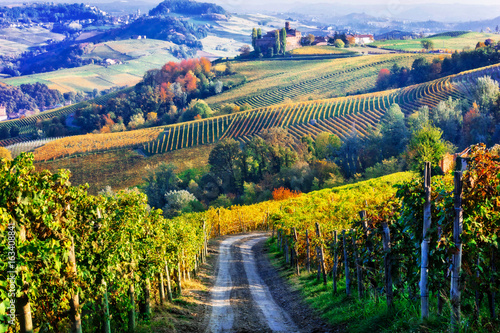 Foto op Canvas Wijngaard Vineyards and castles of Piemonte in autumn colors. North of Italy
