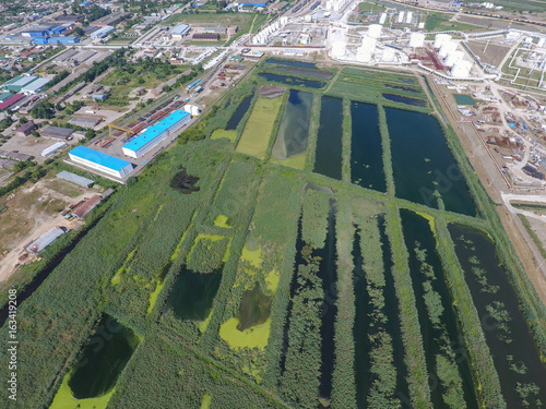 The sewage treatment plant in Slavyansk-on Kuban. Water for sewage treatment in a small city. Bright reeds on the banks of water