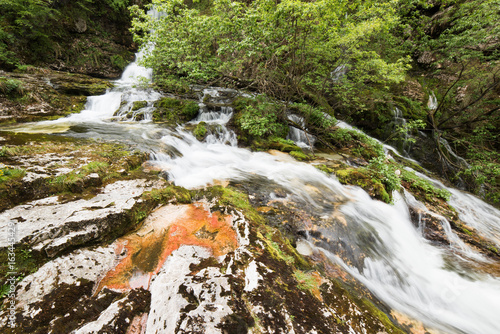 Tuinposter Bos rivier Crystalline water games. Fontanon of Goriuda. Chiusaforte, Friuli