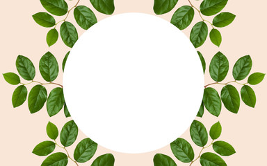 white blank space and green leaves over beige