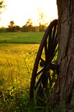 Amish buggy wheel leaning against a tree in the country  - 163481442