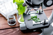 concept healthy food inspection herbs in laboratory - 163495659