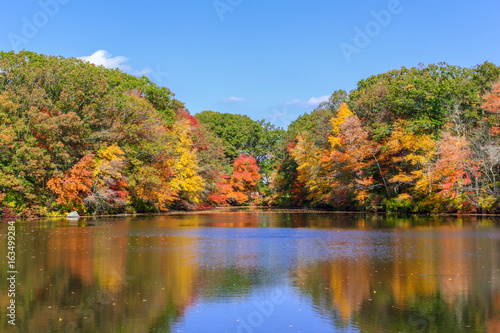 Fall Color has arrived in New England © Nelia