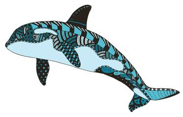 Killer whale zentangle stylized, vector, illustration, freehand pencil, hand drawn, pattern, orca. © romanpoljak