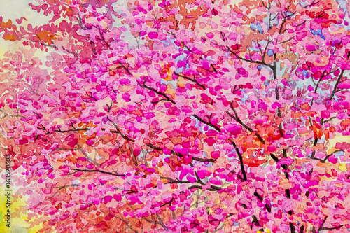 Aluminium Colorful of wild himalayan cherry and emotion in abstract background