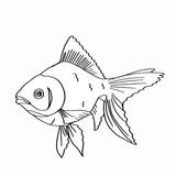 Japanese fish coloring