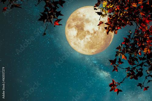 piekna-jesien-fantazja-klonowy-drzewo-w-sezonie-jesiennym-i-ksiezyc-w-pelni-z-milky-sposob-gwiazda-w-nocnych-nieb-tlo-styl-retro-grafika-z-rocznika-odcien