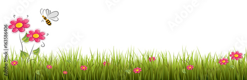 Fototapeta Fresh realistic green grass with red flowers - vector illustration