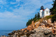 Maine lighthouse over rocky cliffs in Acadia National Park.