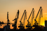 Big cranes silhouette in the port at sunset - 163586606