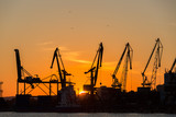 Big cranes silhouette in the port at sunset - 163586640