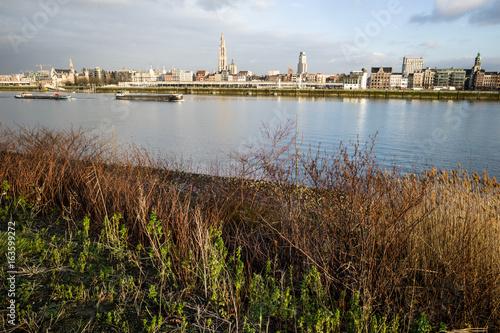 Antwerpen , landscape on Scheldt