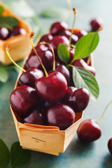 Juicy fresh cherry close-up. Organic healthy berries. Selective focus