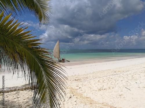 Dream beach in zanzibar