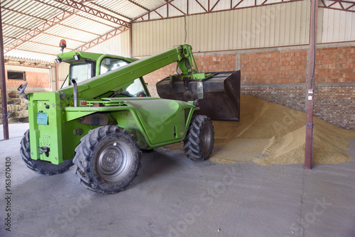 loader pushes a bunch of wheat in the hangar
