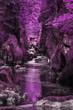 Quadro Stunning ethereal landscape of deep sided gorge with rock walls and stream flowing through surreal purple foliage