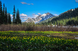 Tenquile Lake, British Columbia, Canada - July 8th, 2017 - 163720693