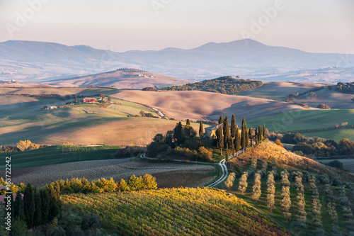 Agricultural landscape with vineyards and gardens
