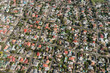 Cape Town (suburb) aerial view - 163741646