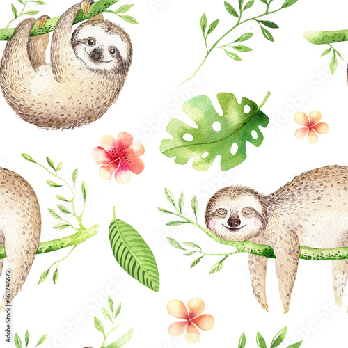 Baby animals sloth nursery isolated seamless pattern painting. Watercolor boho tropical drawing, child tropical drawing cute palm tree leaves, tropic green texture, exotic flower. Aloha baby shower - 163746672
