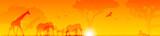 animali, sole, savana - 163766084