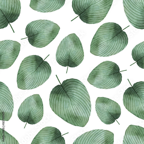 Watercolor seamless pattern with tropical leaves isolated on white background. - 163768869
