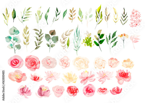 Watercolor set with flowers.