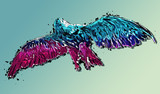 Colorful abstract eagle or hawk geometric image