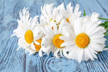 Daisy chamomile flowers on wooden garden table