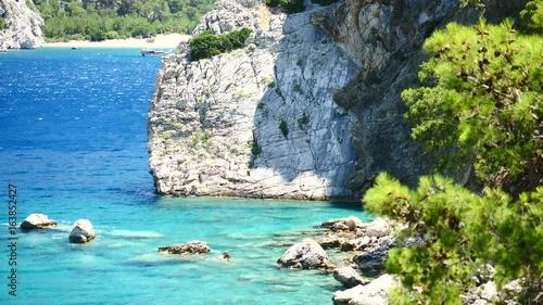 Foto op Canvas Mediterraans Europa Pine tree with blue sea background Turkey