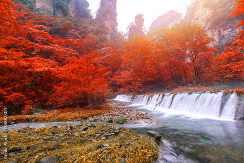Waterfall in Golden whip stream at Zhangjiajie National Forest Park, Hunan, China