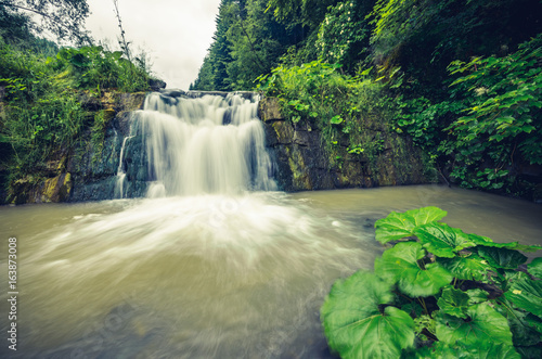 Waterfall in Wierchomla, Beskid Sadecki mountain range in Polish Carpathian Mountains - 163873008