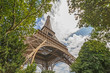 view on Eiffel tower from garden at summer day