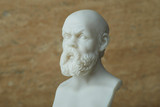 Statue of Socrates,ancient greek philosopher. - 163894496