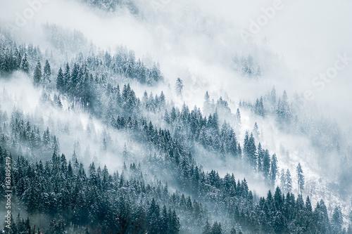 Nebel Landschaft - 163895419