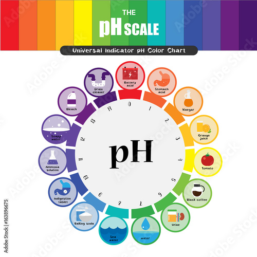 The Ph Scale Universal Indicator Ph Color Chart Diagram Buy Photos