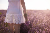 Girl in white dress holding a bouquet of fresh lavender in lavender field - 163918212