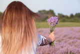 Girl  holding a bouquet of fresh lavender in lavender field - 163918295